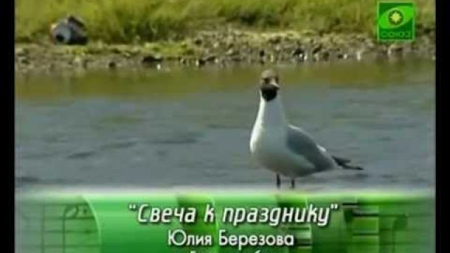 Свеча к празднику - Юлия Березова